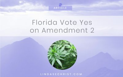 Florida Vote Yes on Amendment 2